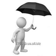 Финансовые и страховые услуги фото