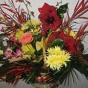 Композиции, букеты и корзины из живых цветов фото