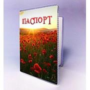 Обкладинка на паспорт із зображенням української природи фото