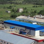 Проектирование и производство оборудования для убоя и мясопереработки фото
