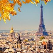 Пазл Castorland 1000 деталей, Осень в Париже, средний размер элементов 1,9?1,7 см фото