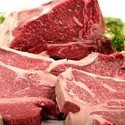 Мясо в ассортименте фото