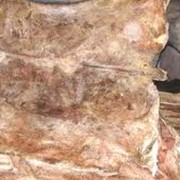 Шкуры, кожи животных фото