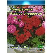 Цветы Пеларгония Ранний универсал (смесь) (0,05г) фото