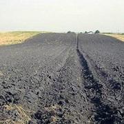 Чернозем фото