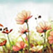 Фартук-панно кухонный декоративный ПВХ, 3000х600мм, №77 фото