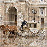 """Прокат лошадей, пони и карет """"Pegasus"""" фото"""
