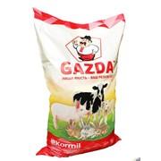 Комбікорм для свиней, БМВД, концентрати GAZDA універсал 20-10% фото