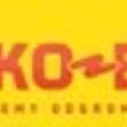 Молниезащита и заземление Elko-bis фото