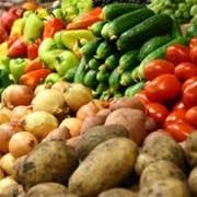 Сельскохозяйственная продукция закупка фото