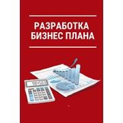 Разработка бизнес планов с финансовой моделью  фото