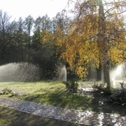 Система автоматического полива Rain Bird фото