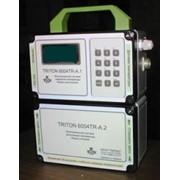 TRITON 6004TR-A. Автономный измеритель-регистратор тепловых процессов. фото