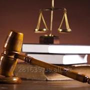 Представительство интересов в судах Украины и в Европейском суде по правам человека фото