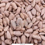 Семена подсолнечника Черкасская область, Смела продажа фото