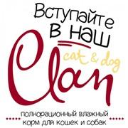CLAN Cat&Dog влажные корма для кошек и собак фото