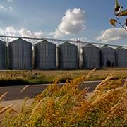 Строительство, проектирование элеваторов и зернохранилищ. фото