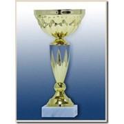 Кубок К2 371 фото