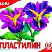 Пластилин Классика, 12 цветов без европодвеса фото