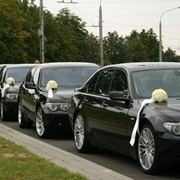 Свадебный VIP кортеж. VW T 5 (10 мест), Мерседес Спринтер (18 мест) Мерседес 220, 221, БМВ Х5, Е65 фото