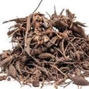 Лабазник корень(гадючник), таволга фото