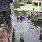 Подводные работы. фото
