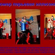 Номер Перьевая иллюзия фото