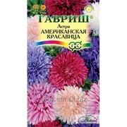 Астра Американская красавица смесь 0,3 г фото