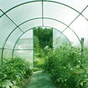 Установка теплиц садовых из Поликарбоната фото