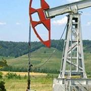 Сорбент Ливсор-С для устранения разливов нефти и нефтепродуктов фото