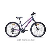 Велосипед горный Rosy 2.0 фото