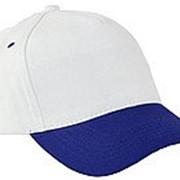 Бейсболка 5 панельные плотные белое синим фото