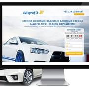 Разработка и продвижение сайтов. Интернет-реклама. фото