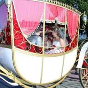 Аренда свадебной кареты фото