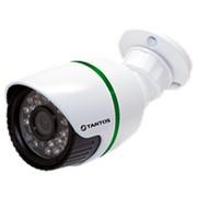 TSi-Pe1F (3.6) Мегапиксельная уличная IP камера с фиксированным объективом и ИК подсветкой фото