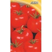 Супер ранний томат Ляна 100гр фото