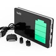 Портативное зарядное устройство (внешний аккумулятор) TopON TOP-DUOS 10000mAh фото