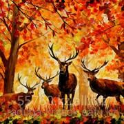 Картина по номерам Л.Афремов Олени в осеннем лесу фото