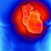 Кардиология и кардиохирургия в Турции фото