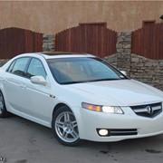 Acura TL 2008 год фото