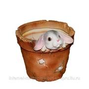 Кашпо декоративное Зайчонок в горшке, 15*14*14 см фото