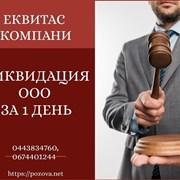 Експрес-ліквідація ТОВ за 1 день в Києві. фото