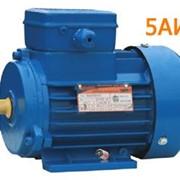 Электродвигатель 5АИ 200 L2 фото