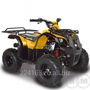 Квадроцикл ABM Ninja 110 фото