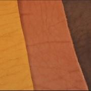 Шорно-седельная кожа фото
