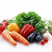 Овощи от производителя фото
