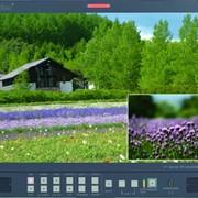 Видеомонитор Datavideo TLM-170 фото