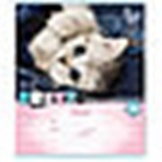 """Тетрадь 24л. А5 клетка Profit """"Котятки с розовой табличкой"""" 24-0091 фото"""