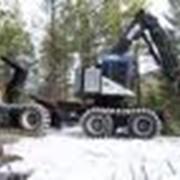 Техника лесозаготовительная фото