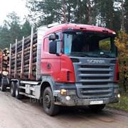 Услуги лесовоза Scania R420 c манипулятором фото
